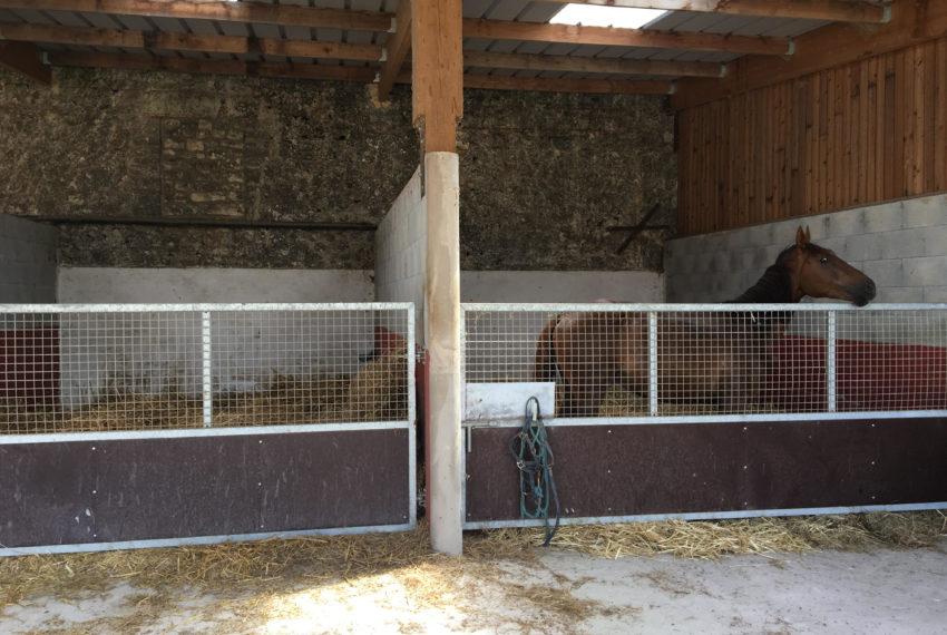 paardenbox II ivh 280